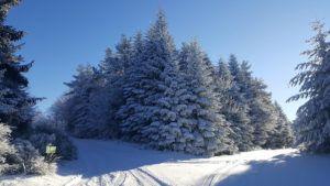 Gîte de groupe Les Éperviers - En hiver